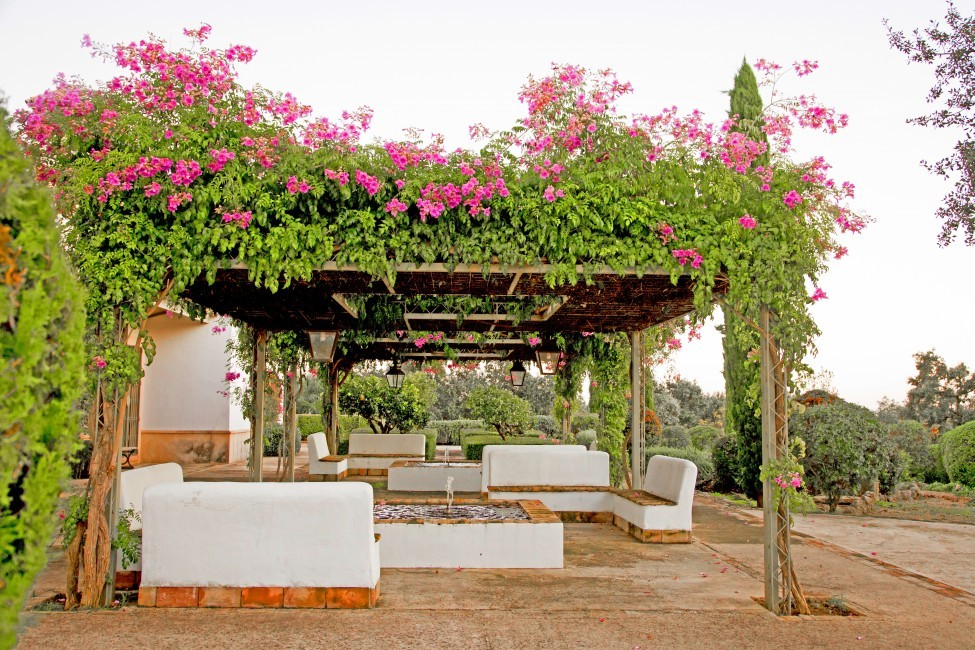 Spain:Cordoba:EsmieEstate:terrace309.jpg